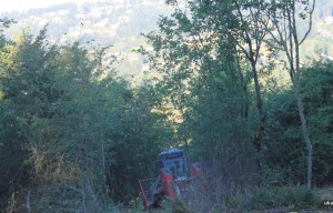 Scouters Mountain Restoration Project