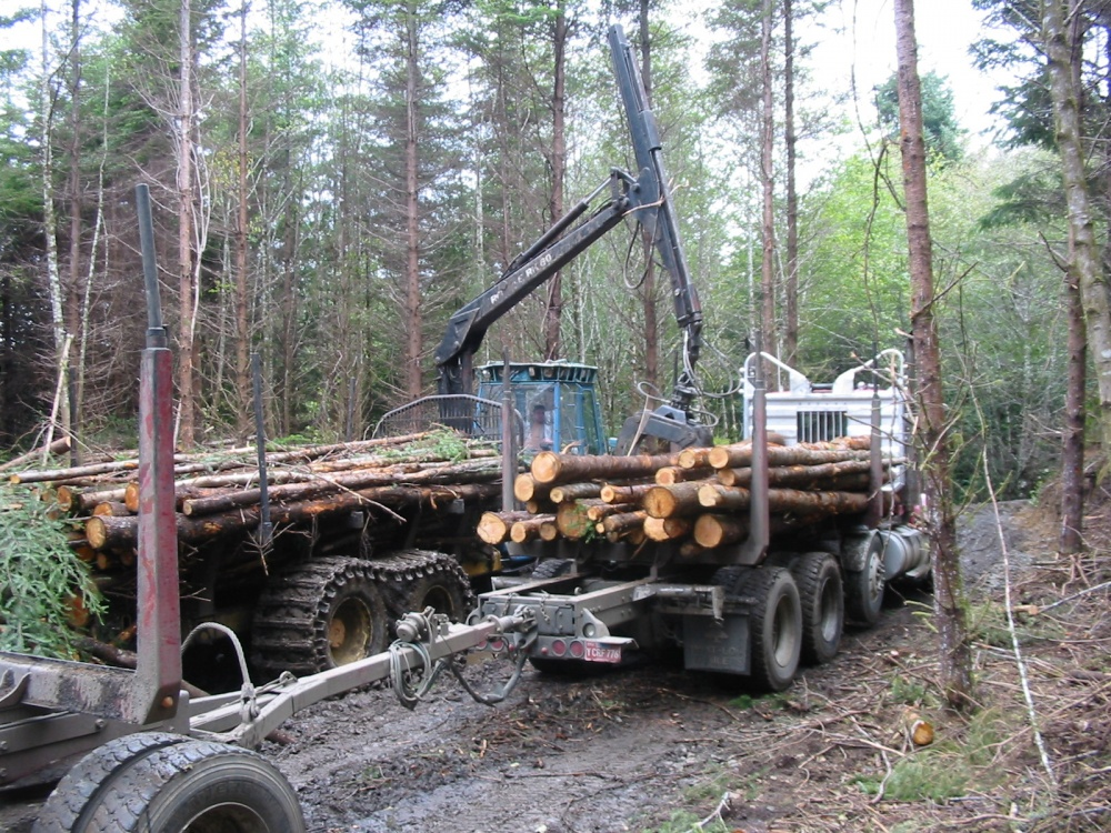 Timber Harvesting Layout Integrated Resource Management