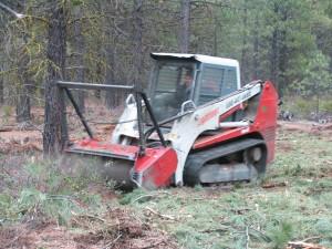 IRM's Lightfoot masticating over stocked pine seedlings.