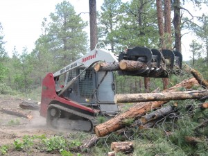 Lightfoot piling pine with Grapple.
