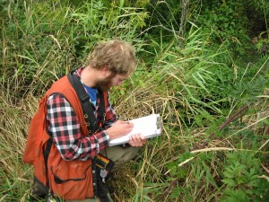 IRM crew recording (early detection) existing noxious weeds.